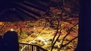 夜の香嵐渓