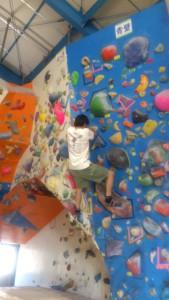 壁登るたぽ