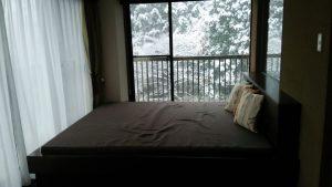 箱根旅行2日目、雪!