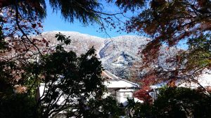 遠くの雪山と紅葉