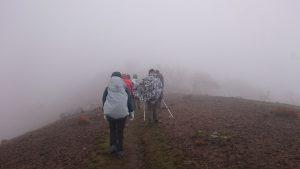 霊仙山、雨登山 初体験