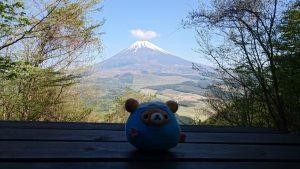 黒岳手前から見る富士山